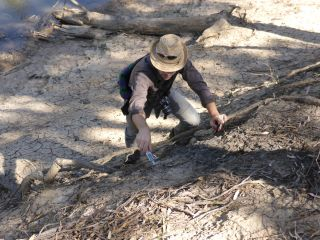 Scientist checking bank condition at Goulburn River near McCoys Bridge, by Goulburn Broken CMA