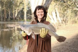 Author with Murray cod