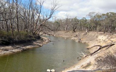 Wimmera River at Jeparit in 2006 post drought