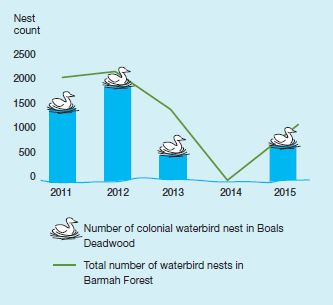 Figure 1. Colonial and other waterbird nests, Boals Deadwood and Barmah Forest